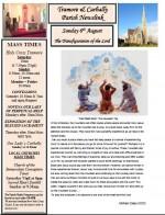 newsletter-6-august-2017